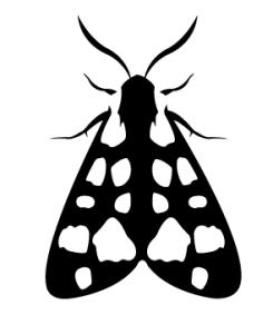 moth enemy alpaca